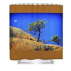 Wild Bonsai And Moon Shower Curtain