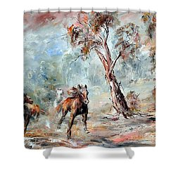Wild Brumbies Shower Curtain