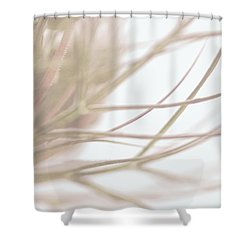 Wild Carrot Abstract Shower Curtain by Tim Good