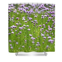 Shower Curtain featuring the photograph Wild Chives by Chevy Fleet