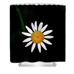 Shower Curtain featuring the digital art Wild Daisy by Chris Flees