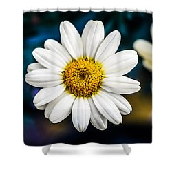 Wild Daisy Shower Curtain