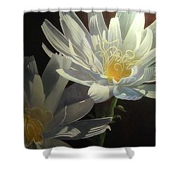 Wild Desert Chickory Shower Curtain