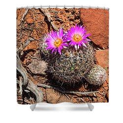Wild Eyed Cactus Shower Curtain