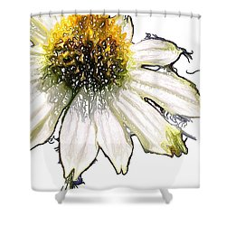 Shower Curtain featuring the photograph Wild Flower Five  by Heidi Smith