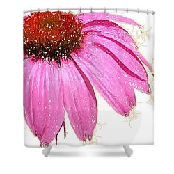 Shower Curtain featuring the photograph Wild Flower One  by Heidi Smith