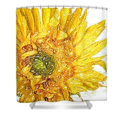 Shower Curtain featuring the photograph  Wild Flower Two  by Heidi Smith