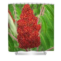 Wild Flowers 11 Shower Curtain