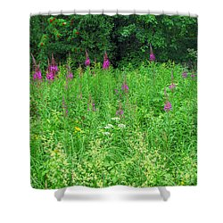 Wild Flowers And Shrubs In Vogelsberg Shower Curtain