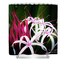 Wild Flowers In Hawaii Shower Curtain
