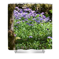 Wild Flowers On A Hike Shower Curtain