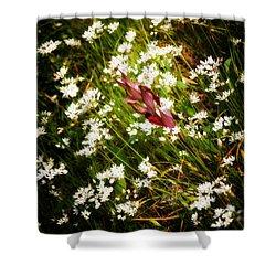 Wild Flowers Shower Curtain by Stelios Kleanthous