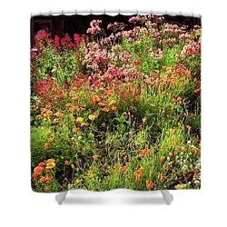 Wild Flowers Shower Curtain by Ted Pollard