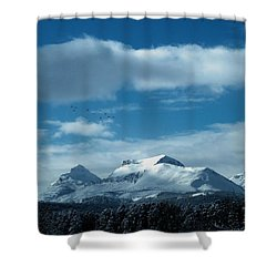 Wild Geese Over Calf Robe Shower Curtain