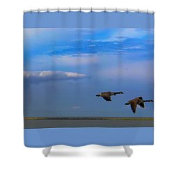 Wild Goose Chase Shower Curtain