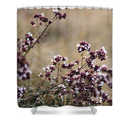 Wild Herbs  #herbs Shower Curtain