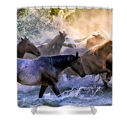 Wild Herd Shower Curtain by Janet Fikar