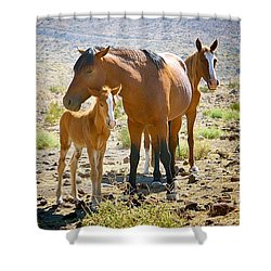 Wild Horse Family Shower Curtain