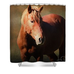 Wild Horse Shower Curtain
