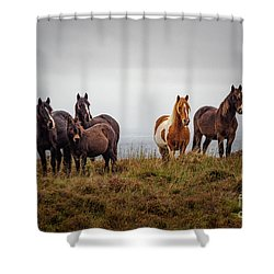 Wild Horses In Ireland Shower Curtain