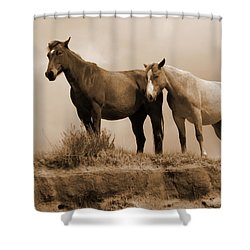 Wild Horses In Western Dakota Shower Curtain