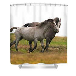 Shower Curtain featuring the photograph Wild Horses by Kelly Marquardt