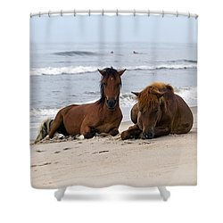 Wild Horses Of Assateague Island Shower Curtain