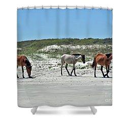 Wild Horses On The Beach Shower Curtain