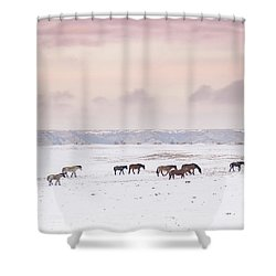 Wild Horses Out West Shower Curtain