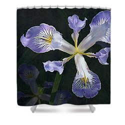 Wild Iris 2 Shower Curtain