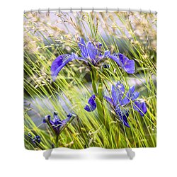 Wild Irises Shower Curtain