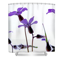 Wild Knotted Cranesbill Shower Curtain by Baggieoldboy