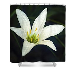 Shower Curtain featuring the photograph Wild Lily by Carolyn Marshall