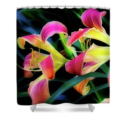 Wild Lily Shower Curtain