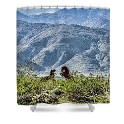 Wild Metal Mustangs Shower Curtain