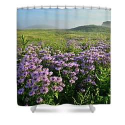 Wild Mints Galore In Glacial Park Shower Curtain
