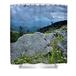 Wild Mountain Flowers Shower Curtain