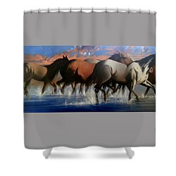 Wild Mustangs Of The Verder River Shower Curtain