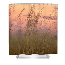 Shower Curtain featuring the photograph Wild Oats by Linda Lees