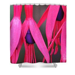 Wild Oregon Fuchsia  Shower Curtain by Michele Penner