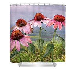 Wild Purple Coneflowers Shower Curtain