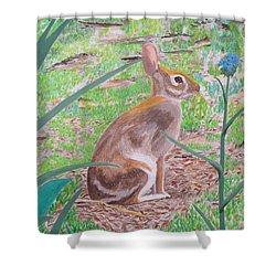 Wild Rabbit Shower Curtain