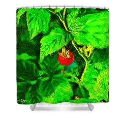 Wild Raspberry - Pa Shower Curtain