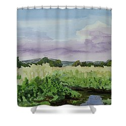 Wild Rice Field Shower Curtain by Bethany Lee