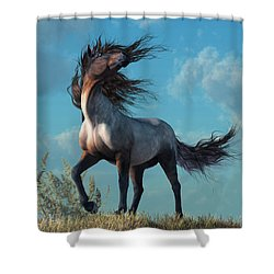 Wild Roan Shower Curtain by Daniel Eskridge