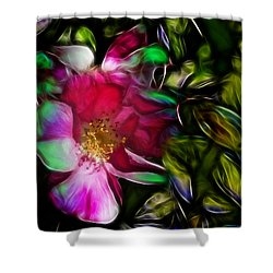 Wild Rose - Colors Shower Curtain by Stuart Turnbull