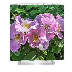 Wild Rose Cluster Shower Curtain