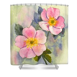 Wild Roses - Glacier Shower Curtain