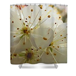 Shower Curtain featuring the digital art Wild Sand Plum  by Shelli Fitzpatrick