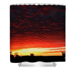 Wild Sky 2 Shower Curtain by Elaine Hunter